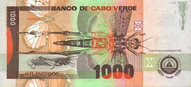 Эскудо кабо-верде. Купюра номиналом в 1000 CVE, реверс (обратная сторона).