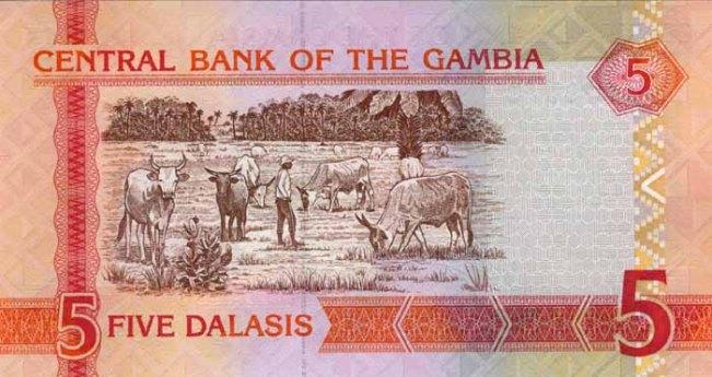 Гамбийский даласи. Купюра номиналом в 5 GMD, реверс (обратная сторона).