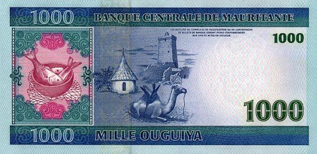 Мавританская угия. Купюра номиналом в 1000 MRO, реверс (обратная сторона).