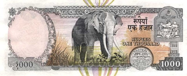 Непальская рупия. Купюра номиналом в 1000 NPR, реверс (обратная сторона).