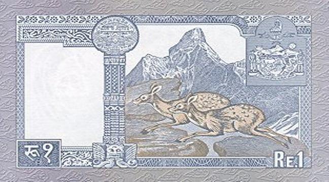Непальская рупия. Купюра номиналом в 1 NPR, реверс (обратная сторона).