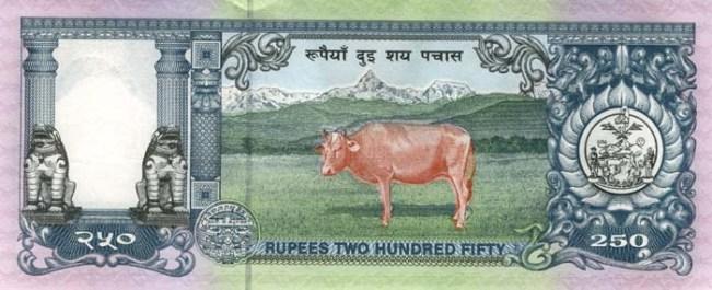 Непальская рупия. Купюра номиналом в 250 NPR, реверс (обратная сторона).