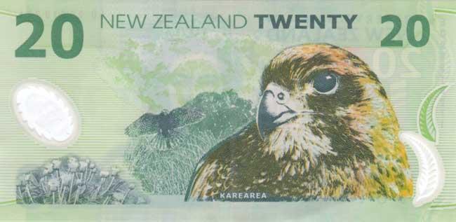 Новозеландский доллар. Купюра номиналом 20 NZD, реверс (обратная сторона).
