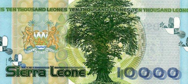 Сьерра-Леонский леоне. Купюра номиналом в 10000 SLL, реверс (обратная сторона).