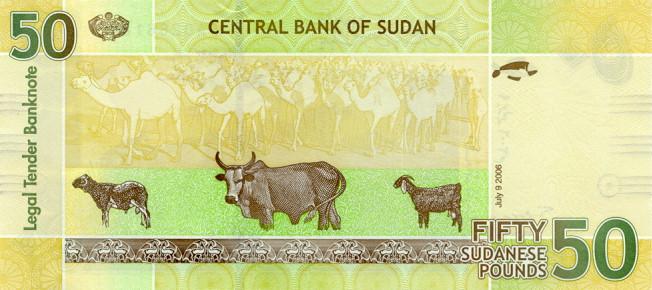 Суданский фунт. Купюра номиналом в 50 SDG, реверс (обратная сторона).