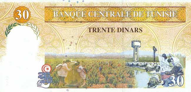 Тунисский динар. Купюра номиналом в 30 TND, реверс (обратная сторона).