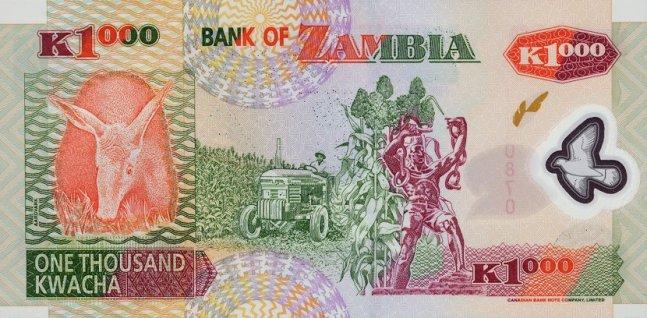 Замбийская квача. Купюра номиналом в 1000 ZMK, реверс (обратная сторона).