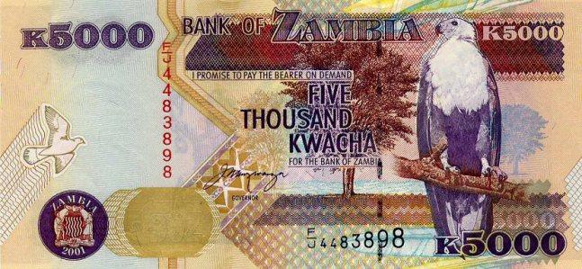 Замбийская квача. Купюра номиналом в 5000 ZMK, аверс (лицевая сторона).