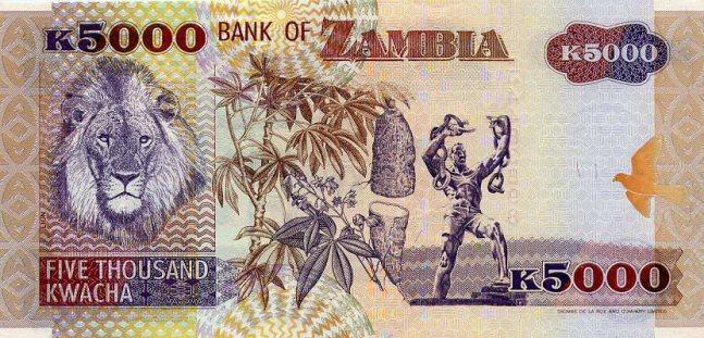 Замбийская квача. Купюра номиналом в 5000 ZMK, реверс (обратная сторона).