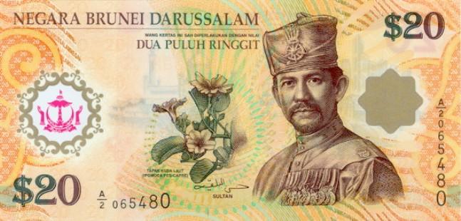 Брунейский доллар. Купюра номиналом в 20 BND, аверс (лицевая сторона).