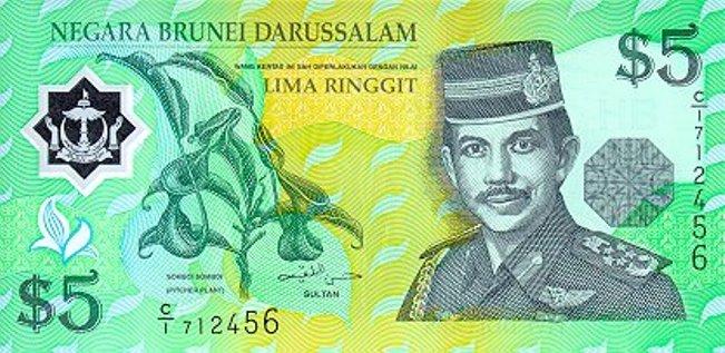 Брунейский доллар. Купюра номиналом в 5 BND, аверс (лицевая сторона).