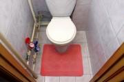 Ирландское ноу-хау - платный туалет в самолете