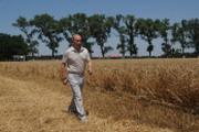 Выселки, Путин и судьба сельского хозяйства