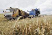 Россия засыплет мир зерном