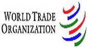 Пути в ВТО: отдельно, но вместе
