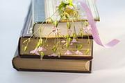 Beige book - долгоиграющее чтиво