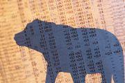"""Медвежий"" угол рынка акций"
