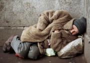 Страны БРИК накормят бедных