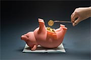 "План спасения США от ""свиного гриппа"" в $1,5 млрд"