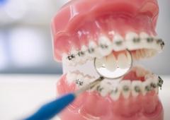 www.pmoney.ru: Советы стоматолога: учимся следить за ртом