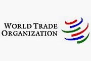 Россия на шаг ближе к ВТО