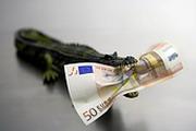 Евро: чем дальше тем дешевле?