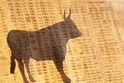 Рынок акций: отскок на неделю