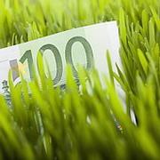 Евро рвется к 42 рублям