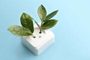 Зеленый свет для энергоэффективности