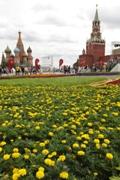 РИА Новости, Дмитрий Астахов