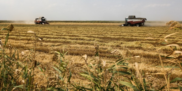 Картинки с сельским хозяйством северо запад